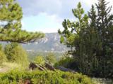 335 Park View Ln - Photo 2