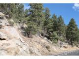 0 Rist Canyon Rd - Photo 6