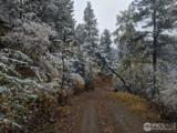 442 Moose Ridge Rd - Photo 23