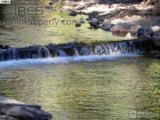1710 Fall River Rd - Photo 9