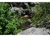 601 Whale Rock Rd - Photo 8
