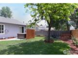 2903 Sally Ann Dr - Photo 18
