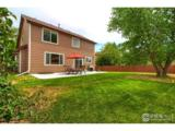 11375 Daisy Ct - Photo 37