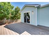 3604 Mount Ouray St - Photo 33