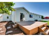 3604 Mount Ouray St - Photo 35