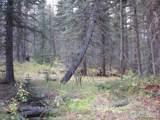 193 Bear Pl - Photo 17