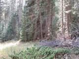 193 Bear Pl - Photo 24
