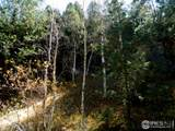 Van Eden Rd-Ontario Mine - Photo 24