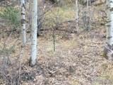 Van Eden Rd-Ontario Mine - Photo 34