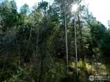 Van Eden Rd-Ontario Mine - Photo 6