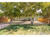 927 Willow Dr - Photo 19