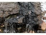 290 Meadowsweet Cir - Photo 32