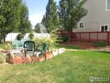 1841 Trumpeter Swan Dr - Photo 25