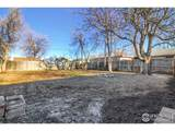 6720 Birch St - Photo 31