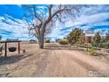 42667 County Road 51 - Photo 32