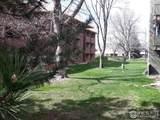 3375 Chisholm Trail Trl - Photo 9