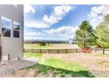 843 Donnelly Pl - Photo 39
