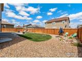 3712 Torch Lily St - Photo 28