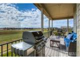 3402 Red Orchid Ct - Photo 6