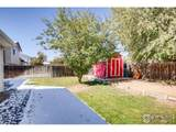 2481 98th Ave - Photo 23