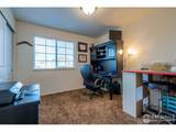 3521 Curlew Dr - Photo 20
