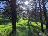 1033 Davis Ranch Rd - Photo 19
