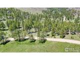 1033 Davis Ranch Rd - Photo 6