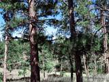 7770 Red Mountain Rd - Photo 2