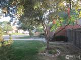 6105 Constellation Dr - Photo 27