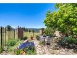 4661 Sunshine Canyon Dr - Photo 5