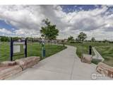 1707 Platte River Dr - Photo 38