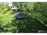 3865 Cheetah Dr - Photo 34