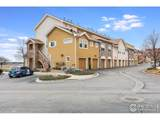 203 Lucca Dr - Photo 24