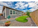 4978 142nd Ave - Photo 21