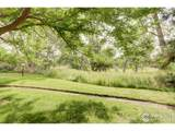 8060 Niwot Rd - Photo 15