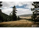 17556 Red Canyon Ranch Rd - Photo 10