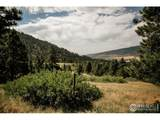 17556 Red Canyon Ranch Rd - Photo 14