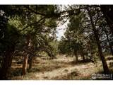 17556 Red Canyon Ranch Rd - Photo 16