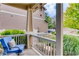 4707 Lucca Dr - Photo 4