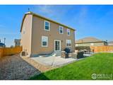 3634 Torch Lily St - Photo 26