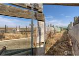 12963 County Road 7 - Photo 16