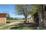 13211 County Road 21 - Photo 9
