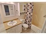 4946 2nd St - Photo 24