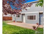 1584 Aster Ct - Photo 28
