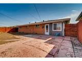 4693 Dudley St - Photo 28