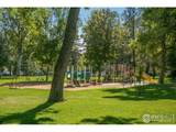 1117 5th Ave - Photo 33
