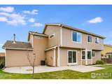 3005 56th Ave - Photo 31
