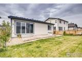 6328 Independence St - Photo 28