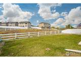 2133 75th Ave - Photo 4