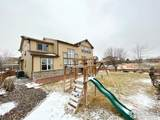 10609 Ouray Ct - Photo 34